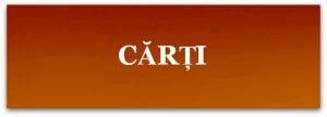 carti-4s